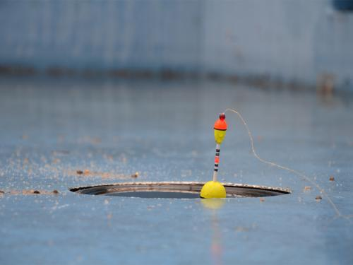 """Fischen unter dem Pool"" / Axel Wagner © 2019"